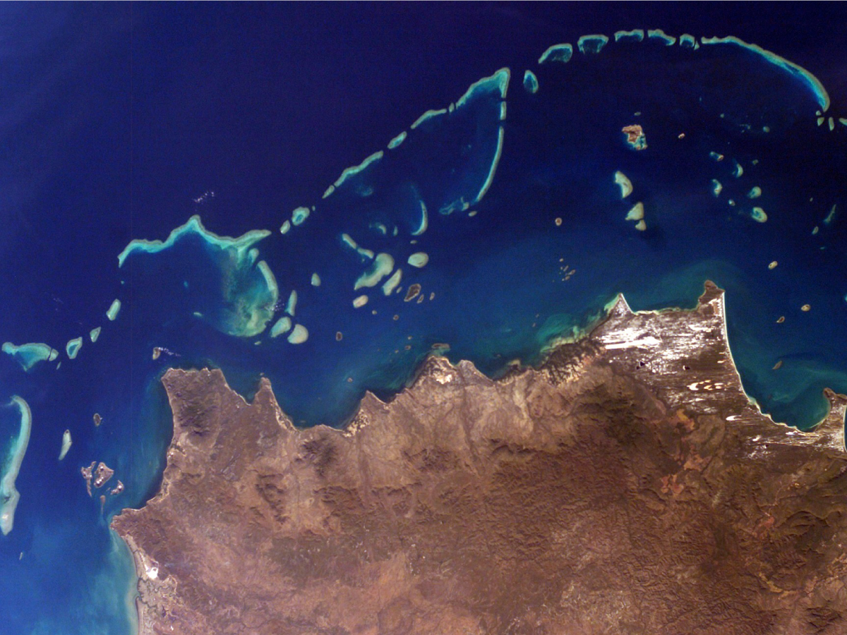 Part of Australia's Great Barrier Reef