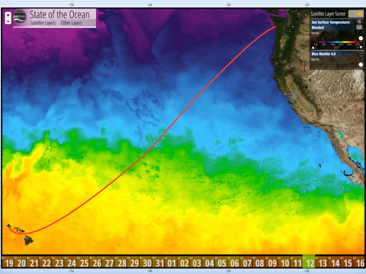 The R/V Falkor cruise track superimposed on a map of sea surface temperature