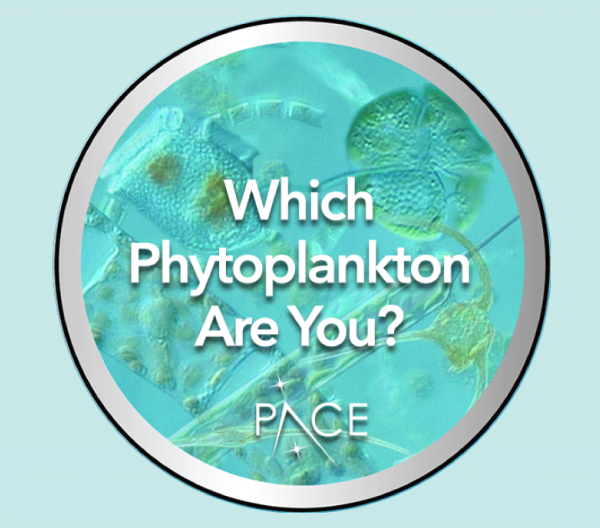 Phytoplankton quiz icon
