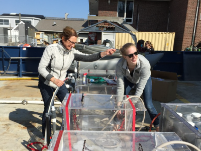 Françoise Morison (URI) and Caitlin Russell secure incubators used to measure phytoplankton growth rates. Credit: Stephanie Schollaert Uz/NASA