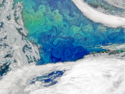 Image of North Atlantic spring phytoplankton bloom. This NASA image was created using VIIRS data from the Suomi National Polar-orbiting Partnership. Credit: Norman Kuring