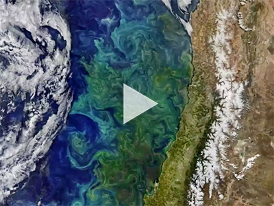 This montage of ocean color and other coastal observations was created by NASA for World Oceans Month 2018. Credit: NASA Ocean