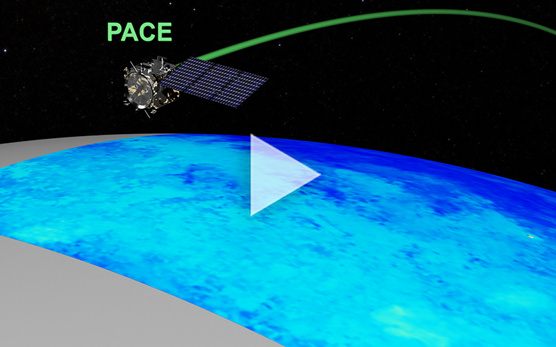 PACE depicted in orbit